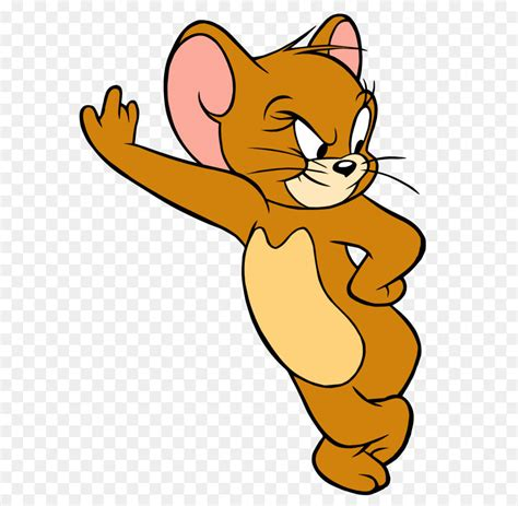 tom cat jerry mouse tom  jerry angry jerry  png
