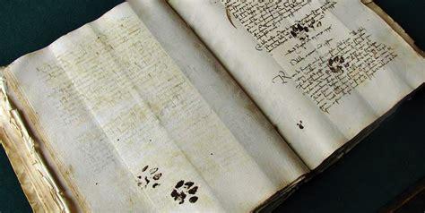 curious cat walks  medieval manuscript bluerue