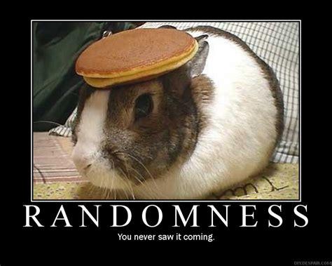 Random Meme - randomness