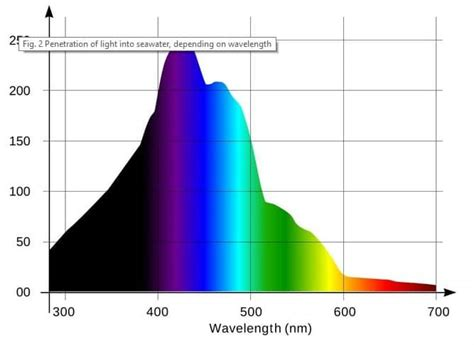 best light spectrum for coral growth best light spectrum for coral growth aquarium adviser