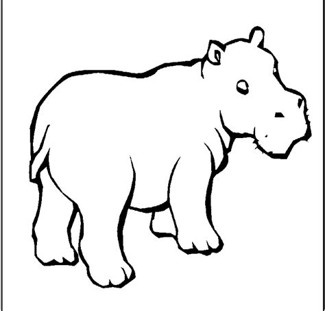 cute hippo coloring page free cute hippo coloring pages