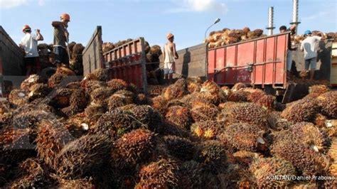 Minyak Goreng Dari Pabrik bumn news companies news page 30