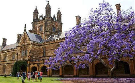 Mba Scholarships Usyd by Business Leader Postgraduate Scholarship Of