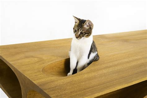 cat table designer cat table desk awesome stuff 365