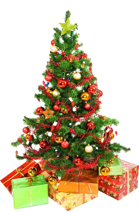 where to buy constructuve christmass wal paer tree png images free