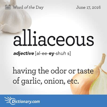5 Letter Words Out Of Garlic 1996 best images about with vocabulary on