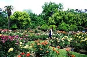 sacramento mckinley park garden stock