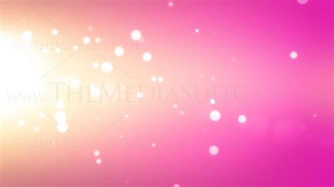 soft orange video background loop for presentations youtube pink background royalty free video loops