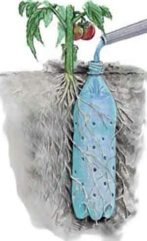 blumen bewässerung im urlaub die besten 17 ideen zu bew 228 sserung auf