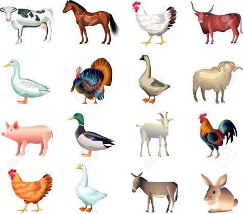 imagenes animales dela granja clipart animales de granja