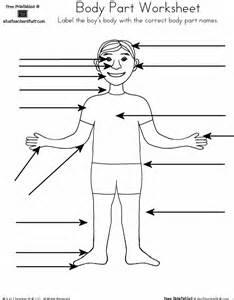 label the body parts worksheet davezan