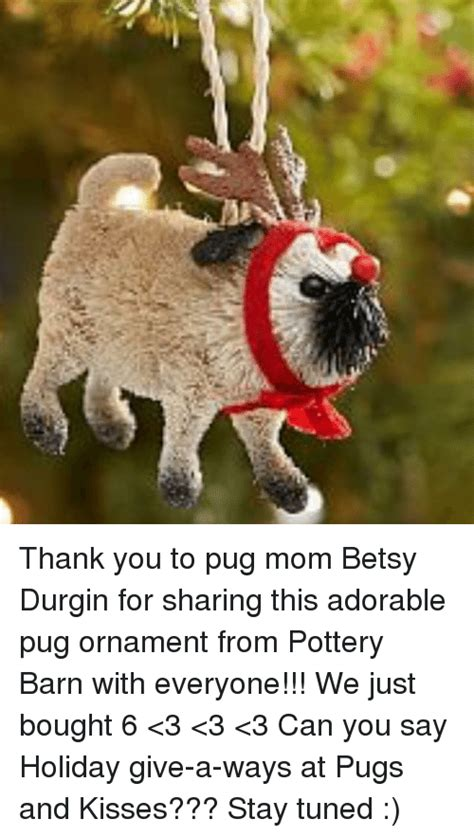 pug saying thank you 25 best memes about betsy betsy memes