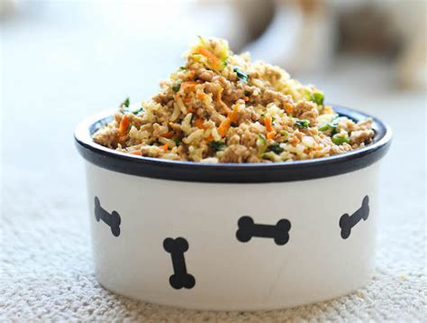 can dogs eat ground turkey 10 healthy food recipes and organic treats can dogs eat this