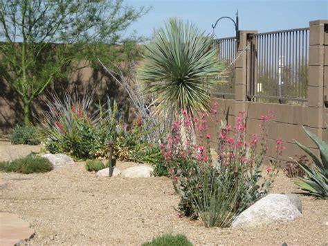 Landscape Design Tucson, AZ Sonoran Gardens Inc.