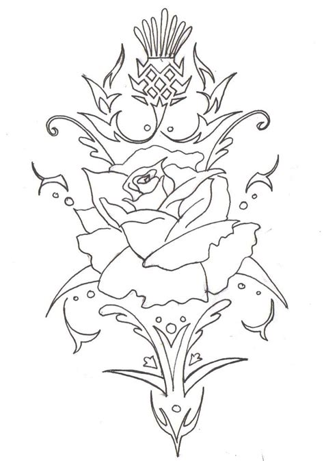 rose and thistle tattoo designs 56 best images about thistle anchor on