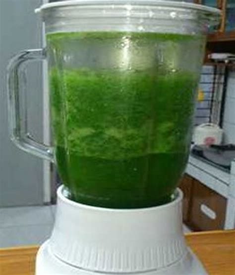 membuat jus bayam  diet sehat alami resep