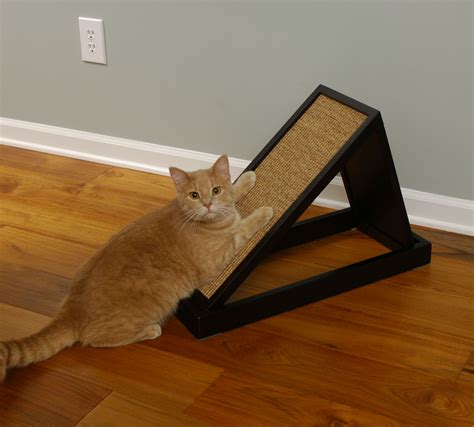 Cat Scratching by Cat Scratching Furniture Images