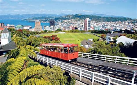 What Mood Is Green wellington new zealand readers tips recommendations