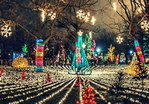 houston zoo lights discount coupons houston zoo lights coupons gallery