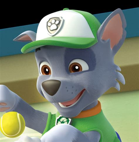 paw patrol breeds paw patrol images rocky the mixed breed wallpaper and background photos 40126954