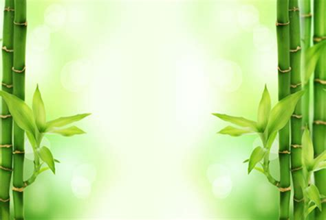 powerpoint background bamboo powerpoint backgrounds for