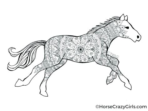 Coloring Of Horses by Printable Coloring Pages Of Horses Horses Coloring Pages