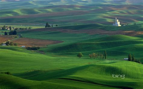 imagenes bing wallpaper green plains wallpaper the wallpaper database