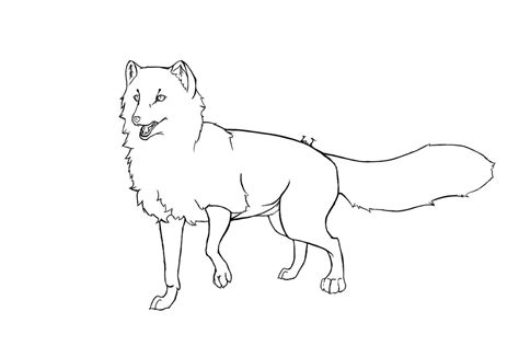 Fox Drawing Outline by Arctic Fox Wip By Iscreamrain On Deviantart