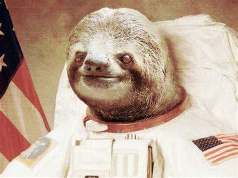 Astronaut Sloth Meme - image 654319 astronaut sloth know your meme
