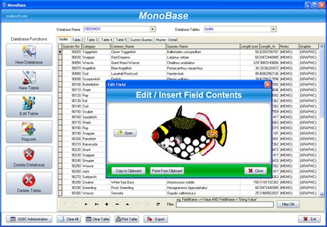 database creator database software free database creator administrator