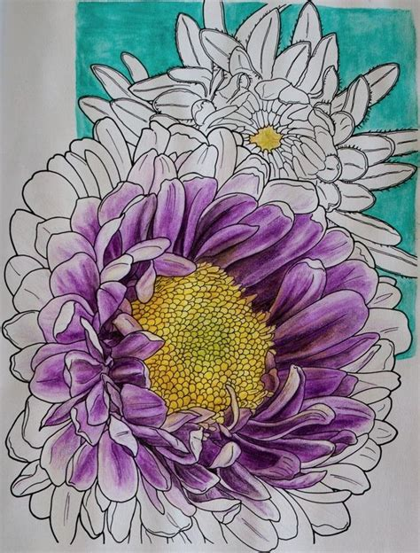 colored pencils coloring books 17 best images about colored pencil on