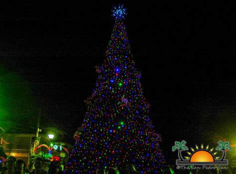 san pedro counts down to christmas with tree lighting