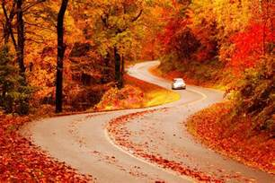 in fall fall foliage peak periods in the southeast