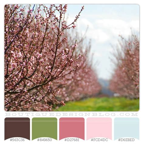 pink and brown color scheme cherry trees color scheme with pink green brown blue