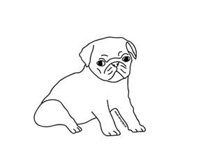pug coloring pages pug coloring pages to and print for free