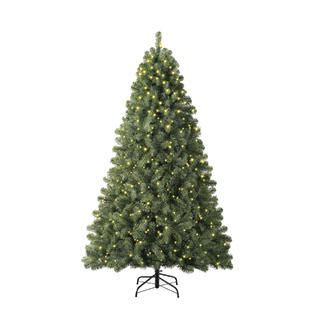 trim a home brilliant tree trim a home 6 5ft lighted mckinley pine tree with kmart
