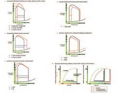 resistance in parallel usmle step 1 mlk usmle step1 cardio images flashcards quizlet