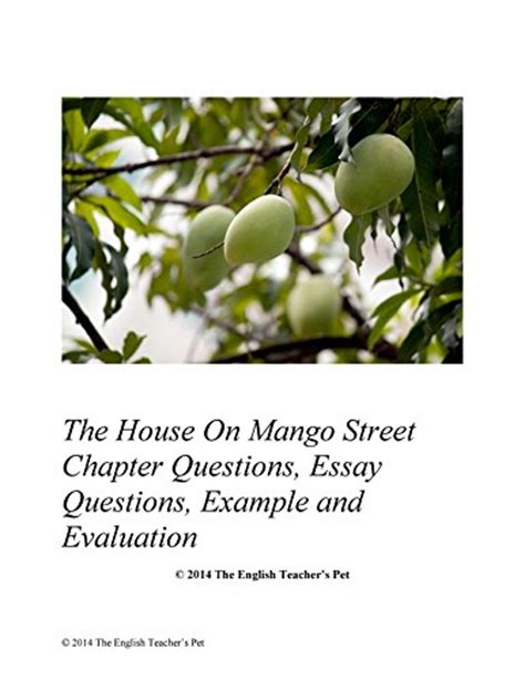 The House On Mango Essay by Mini Store Gradesaver