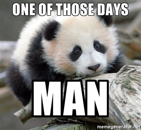 Sad Panda Meme - one of those days man sad panda meme generator