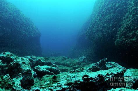 Sea Floor by Rocks On Floor Photograph By Sami Sarkis