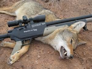 Best Big Game Hunting Rifles » Ideas Home Design