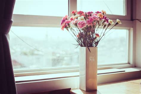fiori da davanzale fiore interno sul davanzale vaso bianco vaso tende