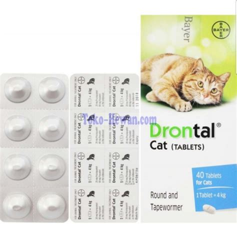 Bayer Drontal Cat 1 Tablet bayer drontal cat tablet deworm pet supplies on carousell