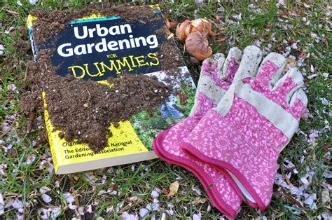 Vegetable Gardening For Dummies by Gardening For Dummies A Guide For Everyone