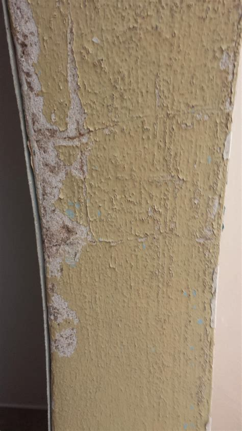 bathroom paint sealer moisture in the bathroom is bubbling lead paint how do i seal it home improvement