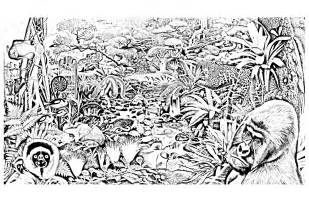 jungle forest animals jungle amp forest coloring pages
