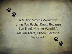 loss of a pet quotes google search | good thoughts