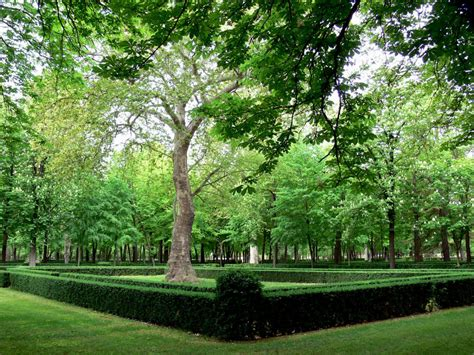 imagenes jardines aranjuez aranjuez reabrir 225 los reales jardines en navidad turismo