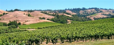 northern california stories monterey to mendocino san francisco to truckee books mendocino wine country calwineries