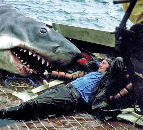 jaws song in boat 300 best jaws images on pinterest shark sharks and